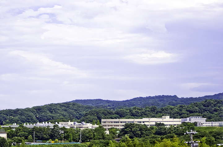 [ギャラリー] | ジャンボリー平塚ゴルフ練習場